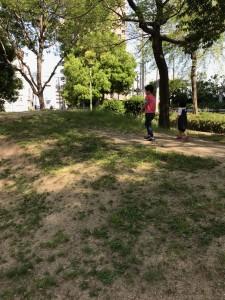 201805_haruichi_6